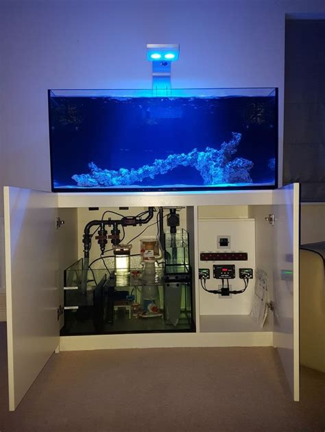 12 best Red Sea Reefer images on Pinterest | Red sea