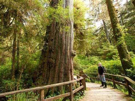 Vancouver Island in British Columbia in Canada